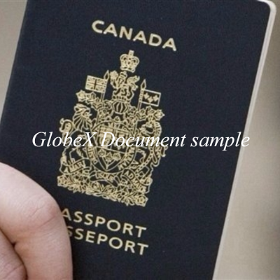 buy real fake documents online